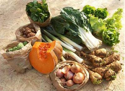 Panier légumes hiver